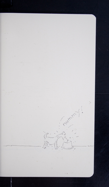 19812 54