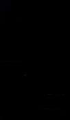 S66029 01