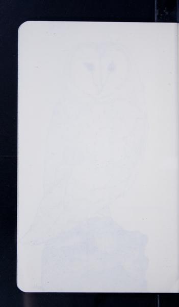 19244 47