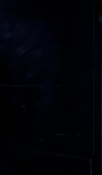S53919 01