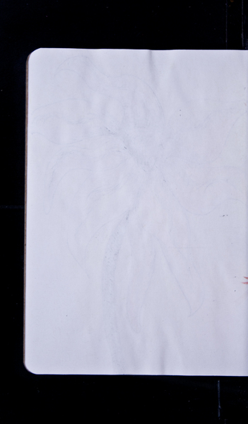 S56213 31