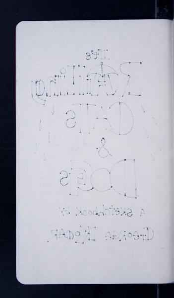 19816 03