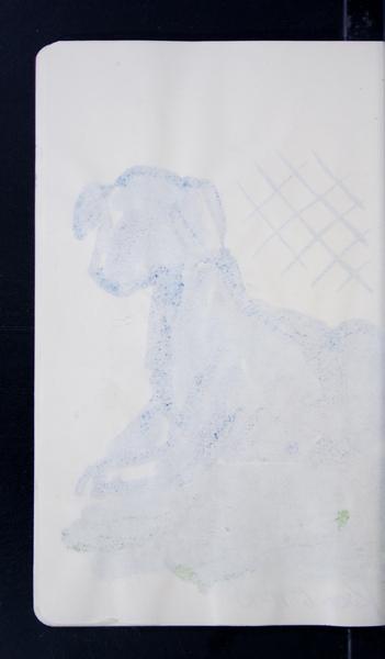 19816 19