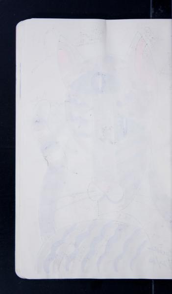19816 49