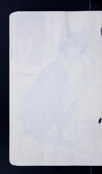 19816 55