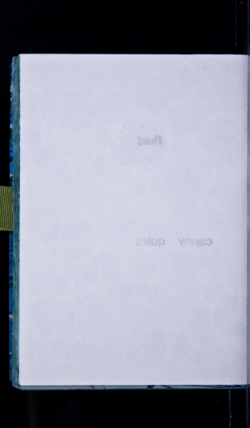 S66375 29
