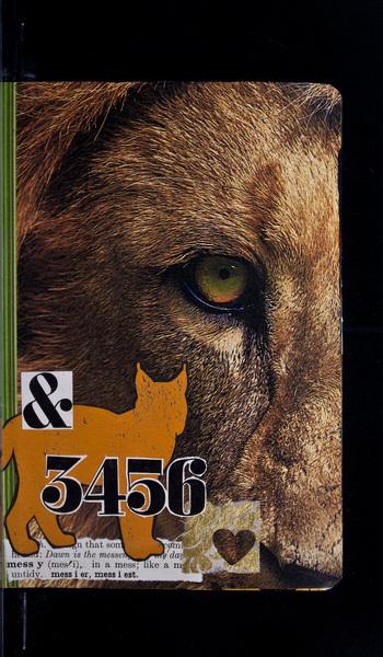 S484 26