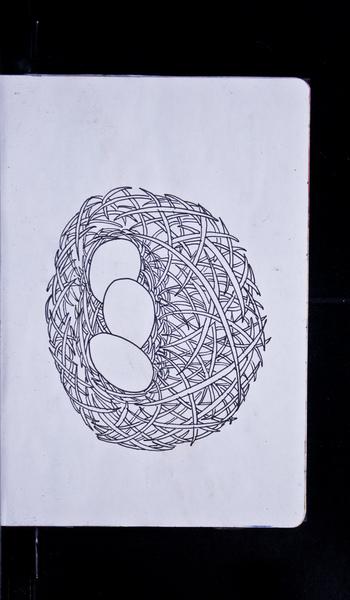 S62581 18