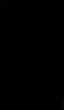 S62976 37