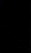 S64095 31