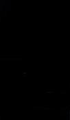 S66064 33