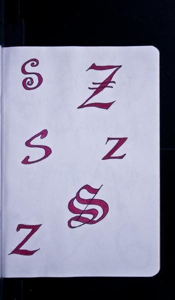 S91198 22