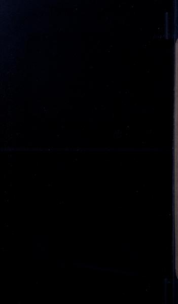 S91067 31