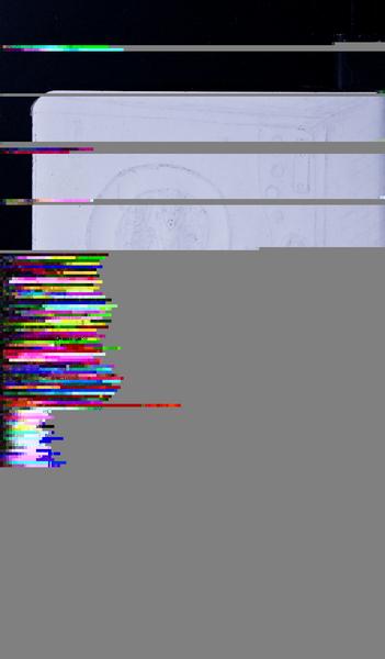 S93646 33