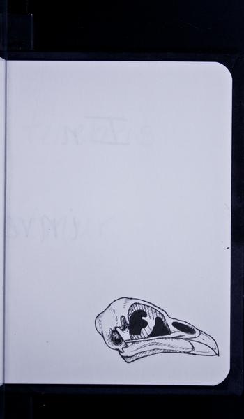 S95536 20