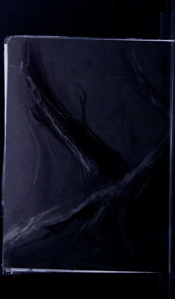 S101499 13