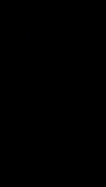S106219 01