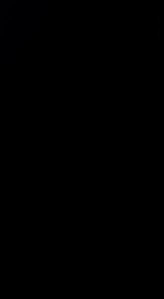 S95176 37