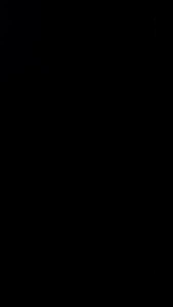 S117336 37