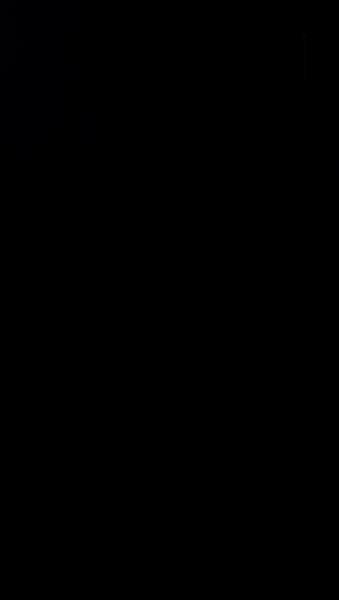 S117470 37