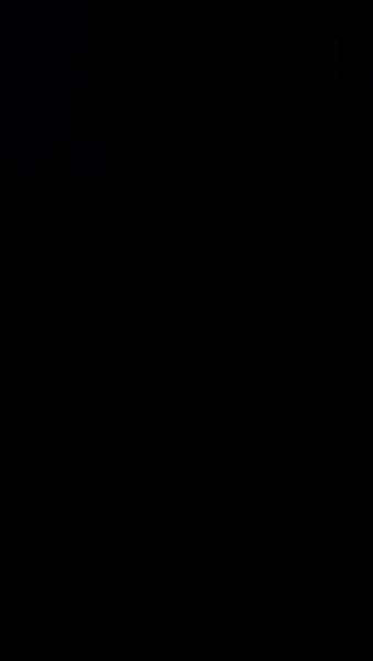 S129219 01