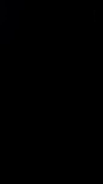 S119938 01