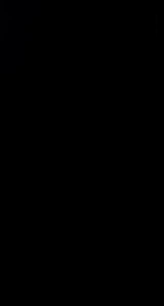 S129588 01