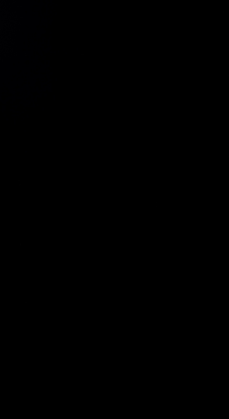 S131324 65