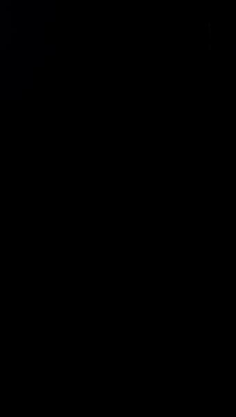 S127462 21