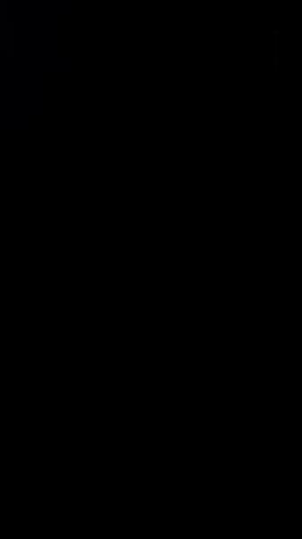 S131081 37