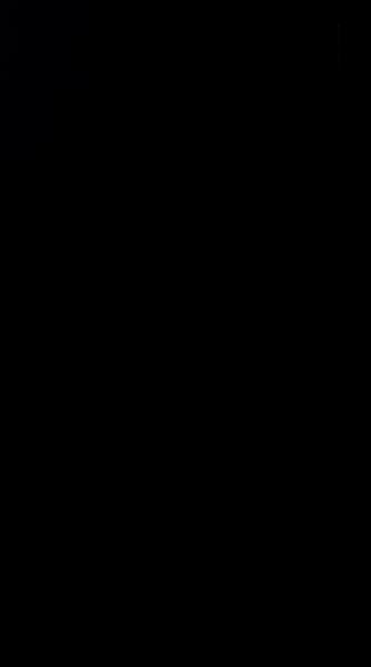 S131089 01