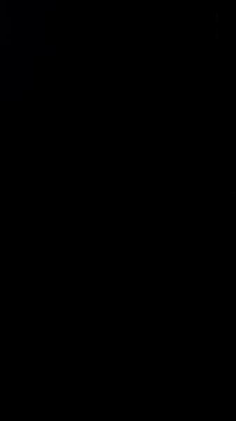 S119421 37