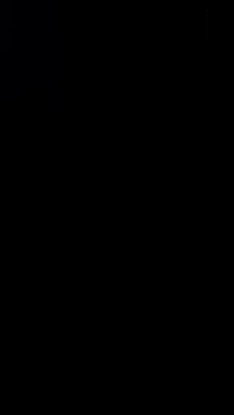 S127303 37
