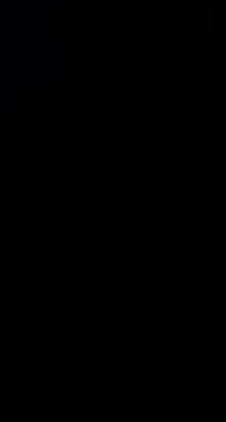 S132170 01