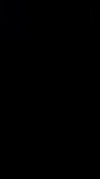S120802 31