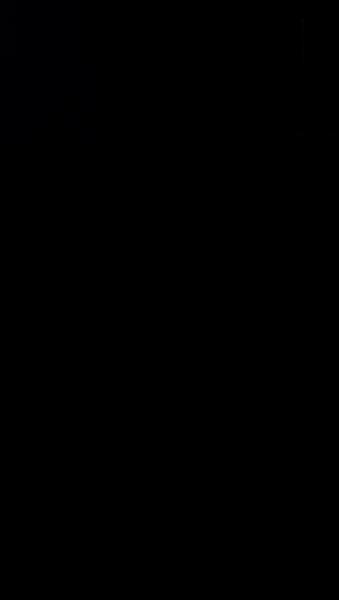 S125779 29