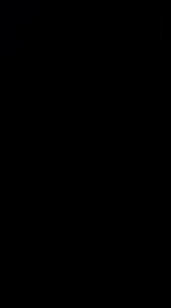 S126005 01
