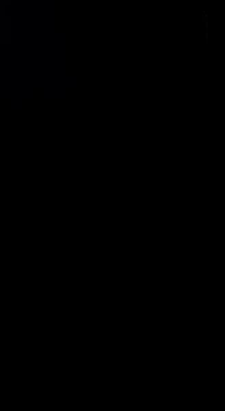 S129995 01