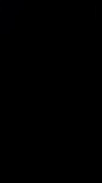 S130896 01
