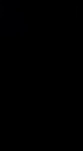 S131105 01