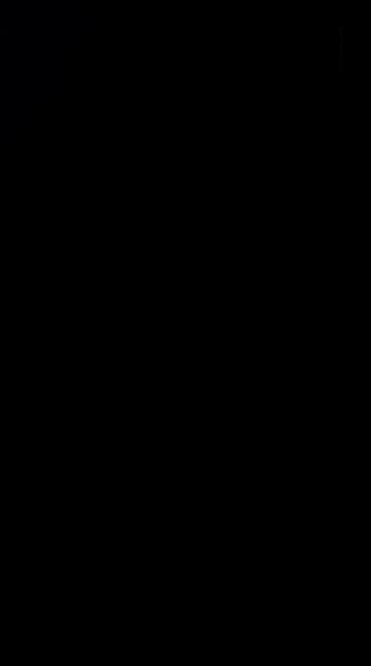 S135337 01