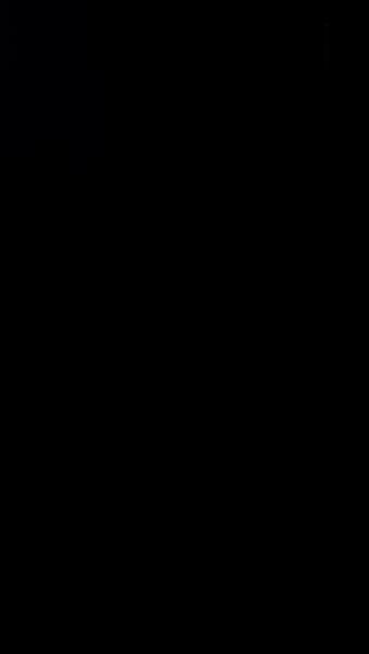 S129597 01