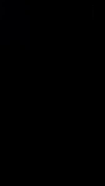S119395 37