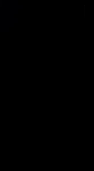 S129629 01