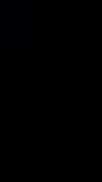 S130196 29
