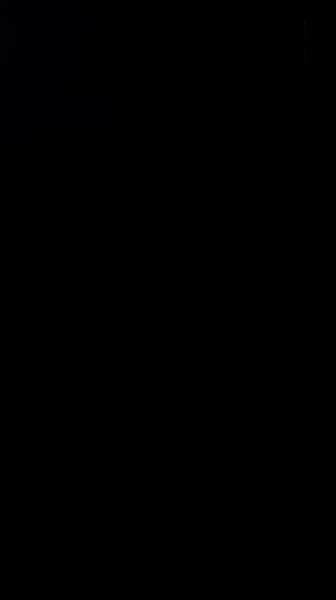S134461 01