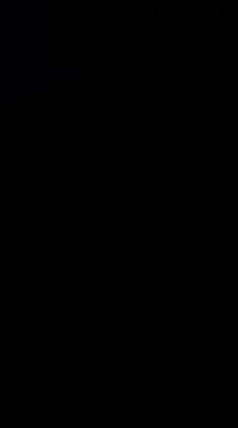 S134461 61