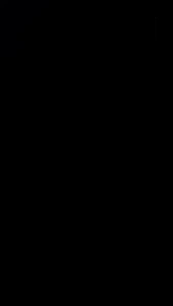 S126863 01