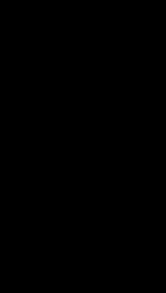 S111208 01