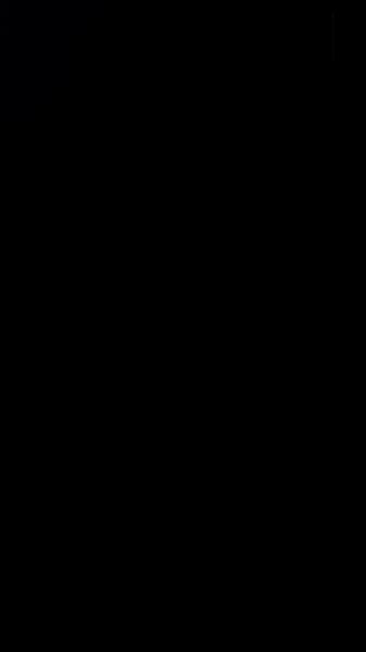S118084 01